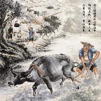 徽骆驼与绩溪牛
