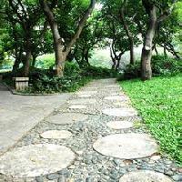 园路设计功能性的实现很重要